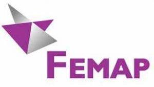 Siemens FEMAP
